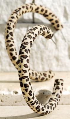 Leopard Print Wood Hoop Earrings