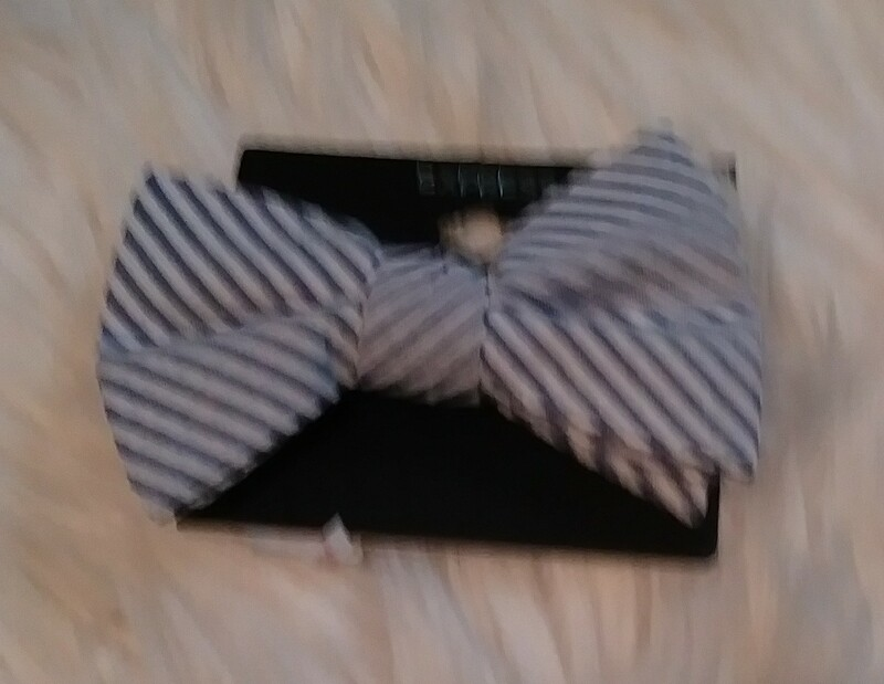 Blue ans White Stiped Bow Tie