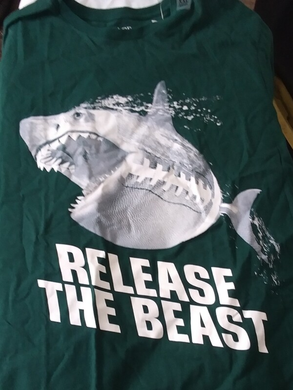 Release The Beast Shirt