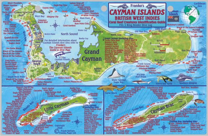 Cayman Islands Fish ID/ Dive site Card