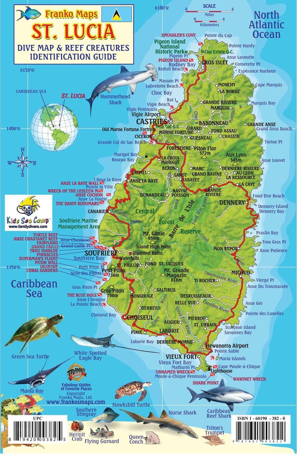 St. Lucia: Diving and Fish ID card