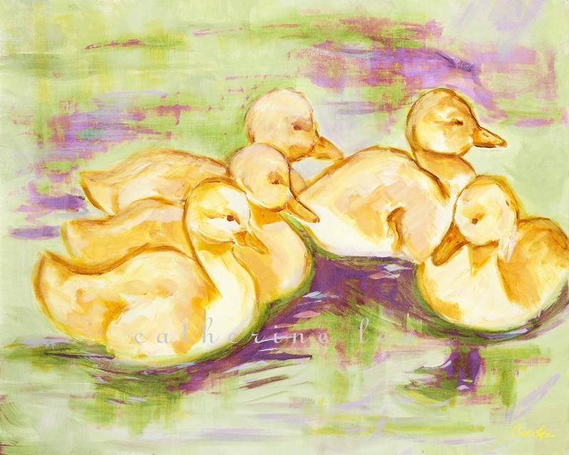 Baby Ducklings 3