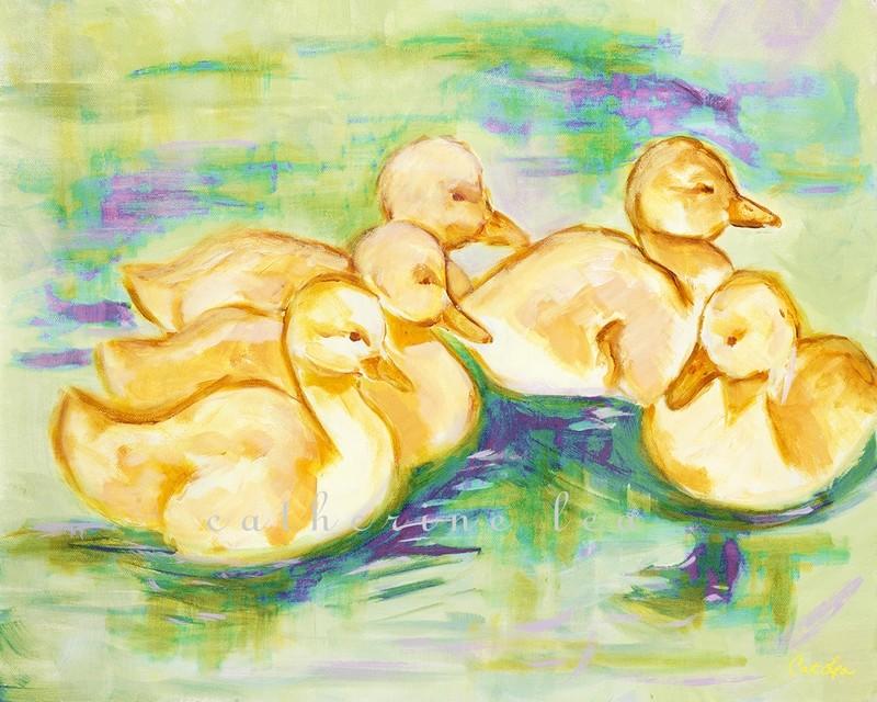 Baby Ducklings 4
