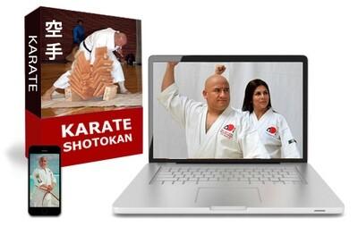 Curso Completo de Karate Do en Línea
