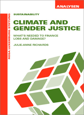 Climate And Gender Justice (Analysen Nr. 51)