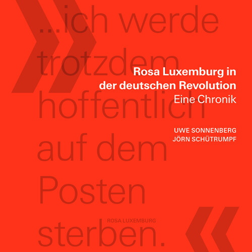 Rosa Luxemburg in der deutschen Revolution - Eine Chronik