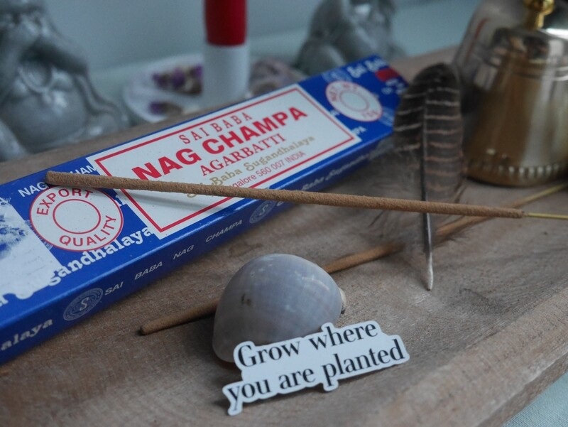 Encens Nag champa de Satya