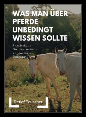Was man über Pferde unbedingt wissen sollte