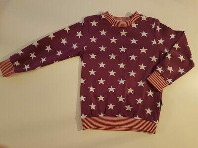Lilla genser med stjerner str. 110