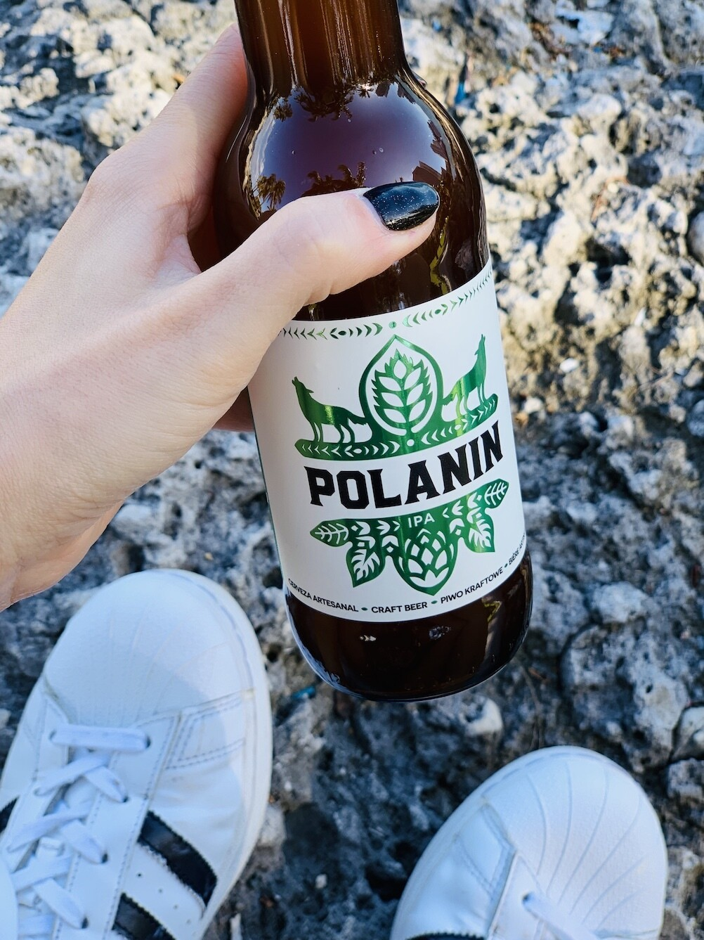 Polanin IPA Case - 24 bottles x 330ml