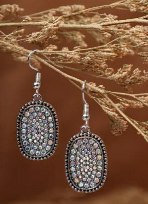 Multi Color Silver Hook Earrings