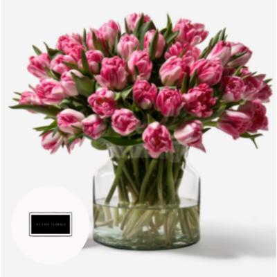 Tulip Desires