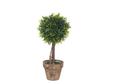 Green Leaf Topiary