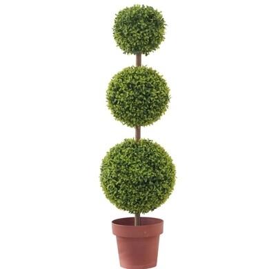 Teagrass Tripple Topiary