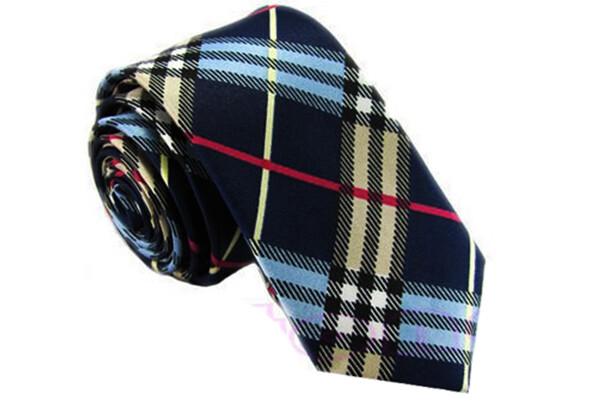 Silk Tie  Multi Colour Skinny Neck Tie In Uk Series