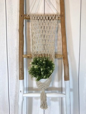 Macrame Wall Hanging Planter