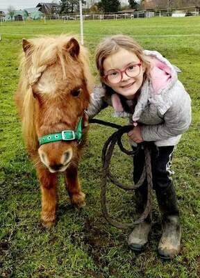"""Der """"Ponyclub"""" - Pferdegestützte Frühförderung für Kinder"""