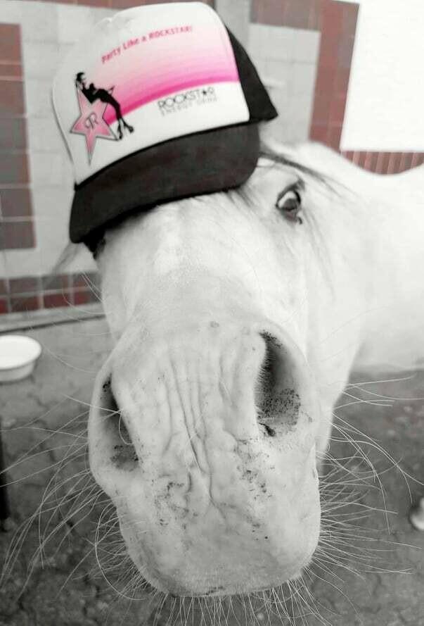 Weiterbildung: Pferdegestützte Frühförderung für Kinder