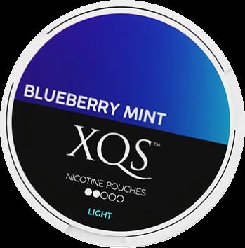 XQS Blueberry Mint 4mg