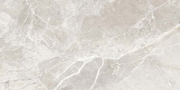 Earth Grey Porcelain Tiles 120 x 60cm