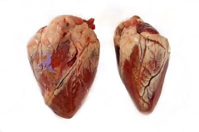Lamb Heart 10lbs