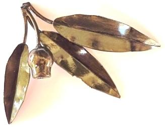 Marri Sprig -  gumnut and 3 leaf