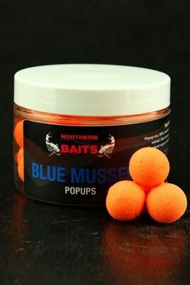 Blue mussel popup