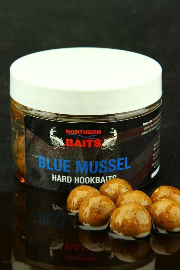 B mussel glugged hookbait