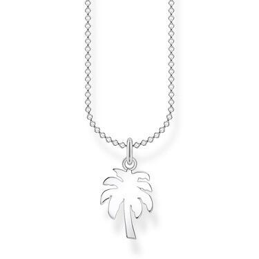 Chaîne palmier