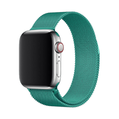 Stainless Steel Strap Band with Magnetic Closure for Apple Watch 42mm / 44mm - Downy