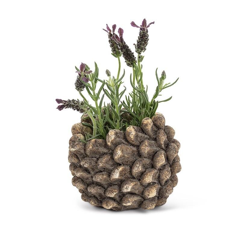 Mini Pinecone Pot