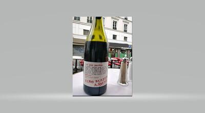 Les pas perdus Brouilly Beaujolais rood