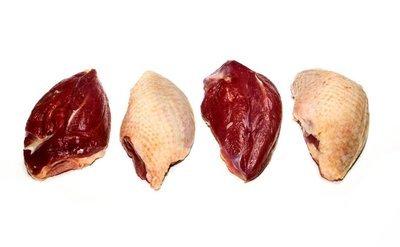 Wilde duif borstfilet 8st