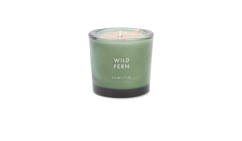 Wild Fern 2.5 oz