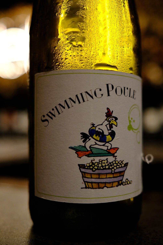 Maison PUR Swimming Poule NV