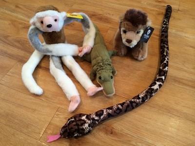 Jungle animals (crocodile)
