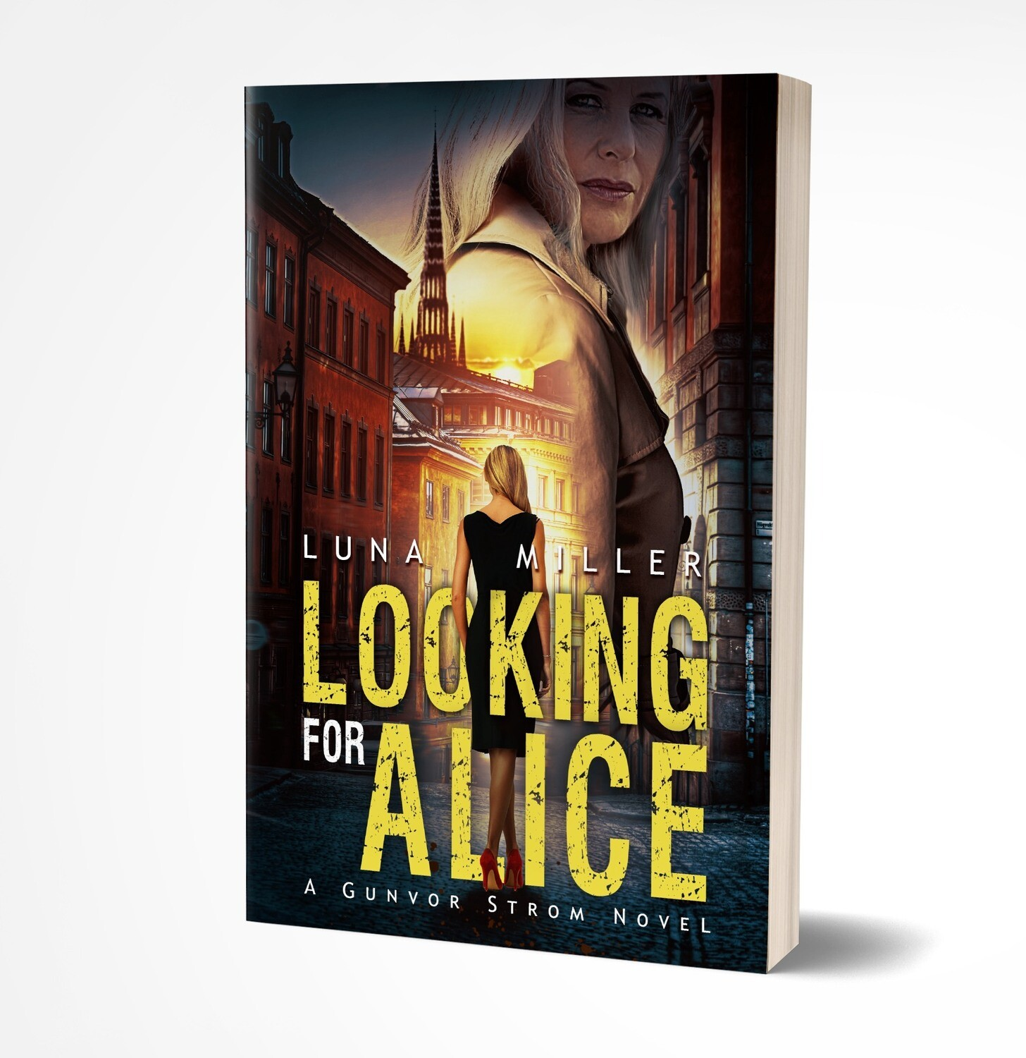 Looking for Alice - Paperback