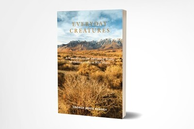 Everyday Creatures - Paperback