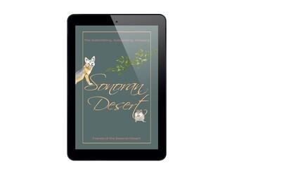 The Astonishing, Astonishing, Amazing Sonoran Desert - eBook