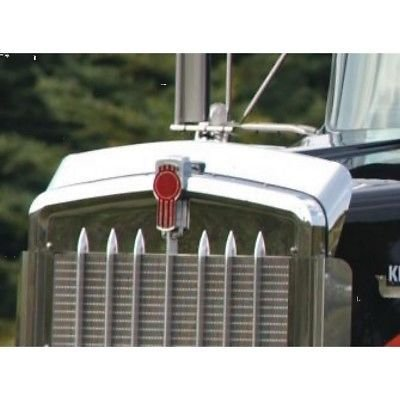 Bug Deflector, Stainless Steel for Kenworth W900L