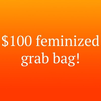 $100 Grab Bag! Feminized Seeds