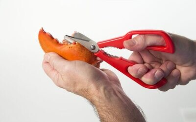 Kitchen Innovations 1413 Detachable Seafood Shears