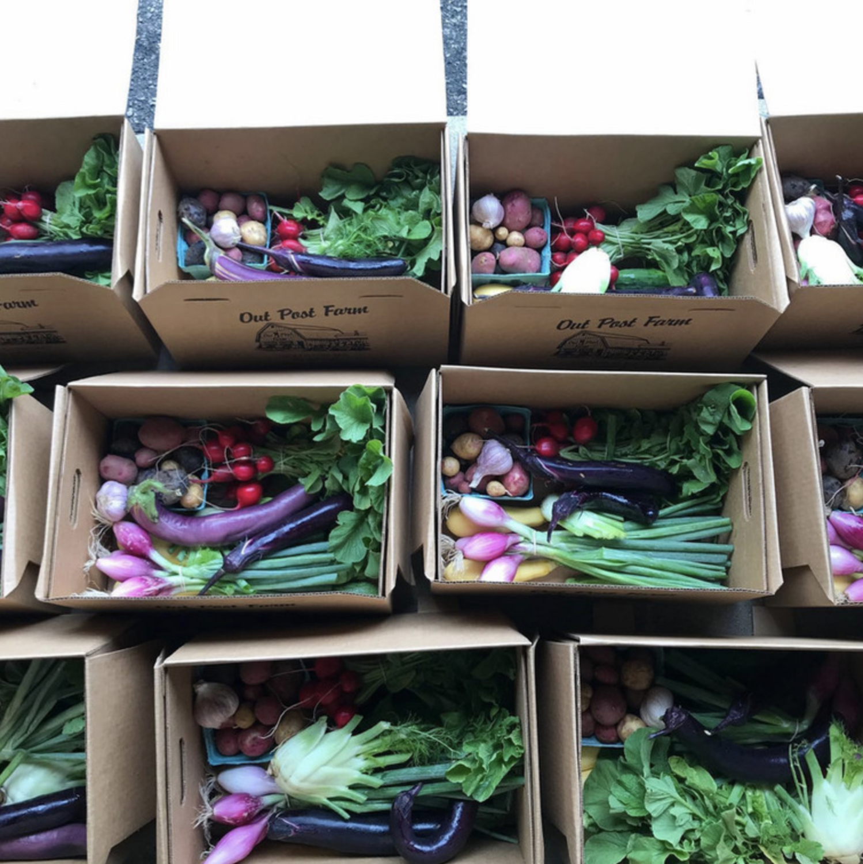 Week 8 Produce Box | Outpost Farm's Own
