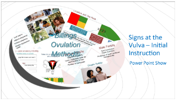Signs at the Vulva - Initial Instruction PowerPoint Download