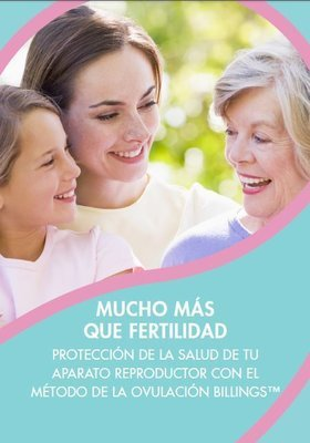 PDF eBook Safeguarding Reproductive Health Spanish