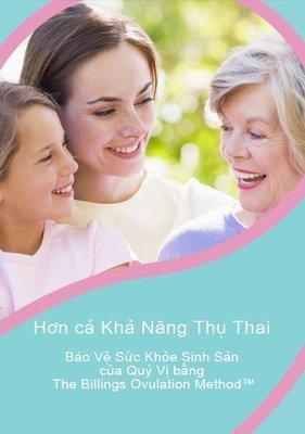 PDF eBook Safeguarding Reproductive Health Vietnamese