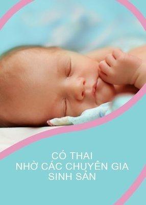 PDF eBook Achieving Pregnancy Vietnamese