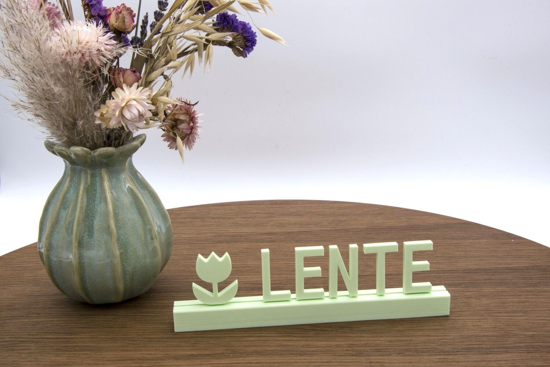 """""""Lente"""""""