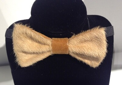 Bow Tie BISE