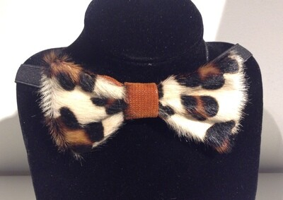 Bow Tie CAPE DOCTOR